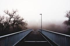 have a good mourning (lina zelonka) Tags: norheim fog morning linazelonka bridge brcke morgen nebel foggy rheinlandpfalz rlp rhinelandpalatinate naheland nahetal nahe deutschland germany europe europa vanishingpoint fluchtpunkt