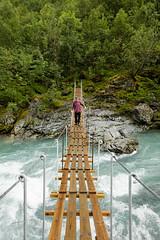 Jotunheimen IV (Gustaf_E) Tags: berg bridge bro fjll forest fors hngbro jotunheimen landscape landskap martintunbjrk nationalpark norge norway skog sommar woods