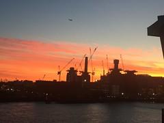 sunset over battersea power station (craizdgoat) Tags: phone london sunset uk battersea