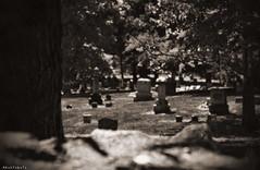 I see our freedom in my sight (Apollyon Sun) Tags: cemetery graveyard oakwood syracuse new york upstate cimitero seppia blackandwhite biancoenero monocromo