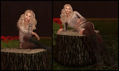 Tree Stump (Gillian Galicia) Tags: thewashsindiansummercartsale darkwaterdesigns dwd izzies groupgift realevil whorecouture morethanever spoonfulofsugar ass analogdog laq maitreya parkplace