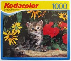 Poesy Prowler - the box (Leonisha) Tags: puzzle jigsawpuzzle puzzleschachtel puzzlebox