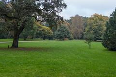 Blick in den Park (toto_26) Tags: stadtpark hamburg germany de natur