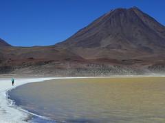 Laguna Leja y Volcn Chiliques (5778 mts) (Mono Andes) Tags: andes chile regindeantofagasta punadeatacama lagunaleja laguna altiplano volcnchiliques volcn volcano volcanoe
