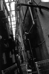 HIDEOUT (Dinasty_Oomae) Tags: minolta  minoltina  minoltinas s   tokyo   monochrome outdoor street bw blackwhite blackandwhite  taitoku  ueno