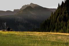 Kasprowy w caej okazaoci z Kalatwek (czargor) Tags: tatry nature mountians mountainside tatra mountains czerwone wierchy