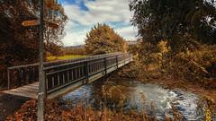 Brücke über die Aach (Knipser31405) Tags: bodensee herbst aach 2016 uhldingenmühlhofen badenwürttemberg deutschland de