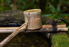Tsukubai and ladle (Tim Ravenscroft) Tags: tsukubai bamboo ladle moss kotoin kyoto japan daitokuji
