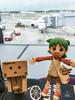 IMG_0665 (brooke716@kimo.com) Tags: 阿楞 단보 ダンボー danboard danbo よつばと yotsubato toy 토이 toytravel