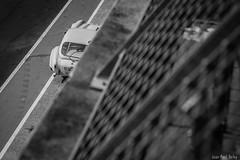 AC COBRA at Le Mans Classic 2016 (JP Defay) Tags: automotive auto american car extrieur race racing coche mans classic le circuit ac accobra blackandwhite bw noiretblanc