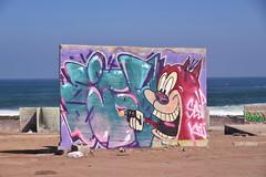 Stimpy In Action! (Ctuna8162) Tags: playa beach antofagasta grafitti painters art