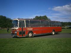 1246 @ Donington Park (ianjpoole) Tags: bartons leyland leopard plaxton elite express 3 rvo668l 1246 showbus 2016 donington park