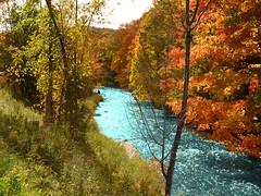Caledon river (Tayako2) Tags: fall contry canada goldenleaves river barnhill escarpment