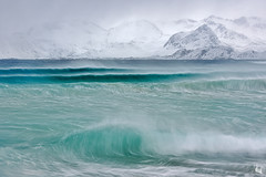 raging sea (Sandra Bartocha) Tags: lys sandrabartocha independentbookpublishing specialedition norway lofoten waves atlantic