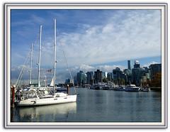 Summer Calm (FernShade) Tags: vancouver britishcolumbia canada coalharbour yachts cityview harbor harborscene boats scenic