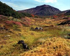Autumn on Susoaidaira (threepinner) Tags: positive selfdeveloped iso100 fujifilm fujica gf670 ebcfujinon 80mm f35 autumn higashikawa mtkumagatake taisetsunationalpark hokkaidou hokkaido northernjapan japan susoaidaira        mountainsnaps mtasahidake