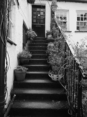 STONE STAIRCASE (Davesuvz) Tags: old england bw black english stone blackwhite alley cottage backstreet cobble alleyway cobbles