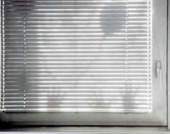 Escaping ballon (Giorgio Verdiani) Tags: shadow sun white slr film window lens hands shadows minolta zoom ballon ombra 110 mani ombre finestra fungus sole bianco cartridge palloncino obiettivo pellicola 13x17