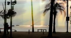 Pattaya beach road, Thailand (Ammar Crazzy) Tags: sunset sun hot thailand 50mm nikon dry thai d810 thaigolf