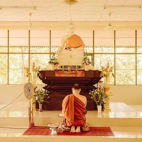 J'ai toujours aimé le Wat Umong. Niché dans une forêt non loin de Chiang Mai, on s'y sent serein. On se promène dans le parc avec les sages paroles de Bouddha dispersées çà-et-là sur les arbres. Le Wat Umong est aussi un centre de méditation et c'est ici