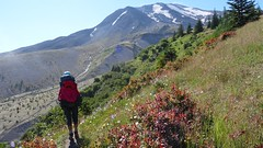 Mt St Helens Loop (Washington, August 2016) - 58 (threeleggeddog) Tags: hiking backpacking tecla bruno teclaris brunorijsman mtsthelens mountsainthelens sthelens volcano