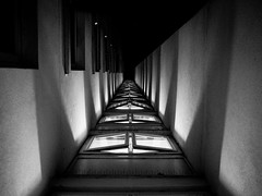 Trench Run (DanRSmith) Tags: bw blackandwhite monochrome contrast light shadow architecture shadowplay perspective