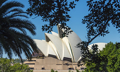 through the trees (Greg Rohan) Tags: sydney sydneyoperahouse outdoor trees opera operahouse photography 2016 d7200