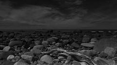 Seljestranda beach, Norway (MortenTellefsen) Tags: seljestranda beach norway norwegian nature natur norsk sea stones lighthouse stony bw blackandwhite artinbw landscape landskap svarthvitt