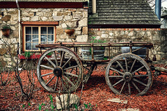 Old cart in Hahndorf (spotandshoot.com) Tags: adelaide australia handorf horizontal horsedrawn southaustralia vacation accomodation building cart cloudy destination dramatic exterior german grass green hahndorf heritage historical holiday horse hotel iconic influence inn market oceania old oldest outside popular restaurant settlement structure tourism tourist town tradition transport unique village vintage wooden yard