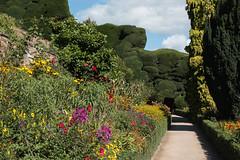Terrace (Sara@Shotley) Tags: terrace borders flowers hedges path powiscastle wales powys september garden nationaltrust sunshine shadows