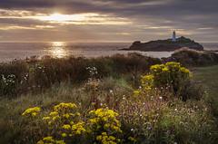 Godrevy Island, Cornwall (DM Allan) Tags: godrevyisland cornwall sunset coast lighthouse virginiawoolf stivesbay
