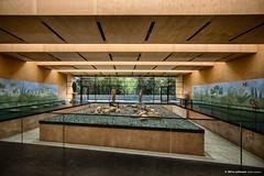 20160818134845 (Henk Lamers) Tags: aguntum austria dlsach museumarcheologicalpark nationalparkhohetauern osttirol