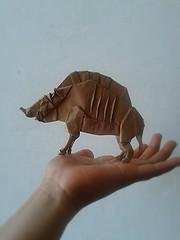 The divine boar - Satoshi kamiya (javier vivanco origami) Tags: origami ica peru javier vivanco the divine boar satoshi kamiya