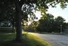 Sunset at the Seminary (Michael Daum) Tags: nikon d700 50mmf18af seminary nature walk nxd