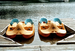 Yellow Paddle Boats (Bill Smith1) Tags: asahipentaxkx believeinfilm billsmithsphotography cottagecountry heyfsc lomo400c41 muskoka smcpentaxm50f14lenslens filmshooterscollective