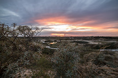 sunset in dutch dunes (roderickvanklink) Tags: dunes dutch landsape sunset sky skyporn