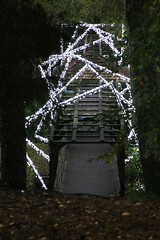 2016 - 14.10.16 Enchanted Forest - Pitlochry (9) (marie137) Tags: enchanted forest pitlochry mobrie137 scotland lights music people water reflection trees shows food fire drink pit patter shapes art abstract night sky tour family walk path bells smoke disco balls unusual whisperer bridge wood colour fun sculpture day amazing spectacular must see landscape faskally shimmer town