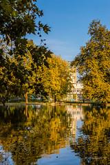 Autumn 011 (Milen Mladenov) Tags: 2016 bulgaria d3200 landscape montana montanesium nikon autumn colors grass leaves orange outdoor park path trees view water waterautumn yellow