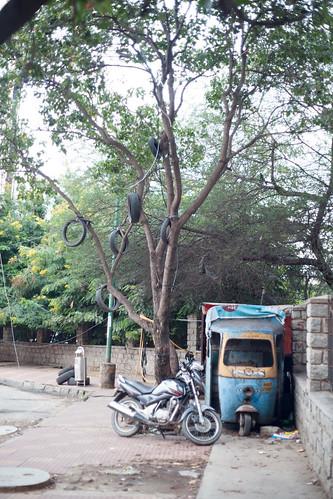 Bengaluru 2016 - DSC07722.jpg