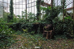 Abandoned Greenhouse-3 (Darm) Tags: sigma 1835 816 f18 medar nikon darme d7000 iloveyourhome double6 doublesix belgique belgium villa decay poussiere dust abandonn factory usine rust rouille caserne barrack military militaire hotel motel italie italy italia home house maison manoir manor architecture structure btiment infrastructure extrieur entrept eos 5d 6d eos6d markii markiii tamron canon d7100 d7200 d800 d700 olympus zuiko leica texte bordure photo flickrunitedaward ruelle vhicule voiture