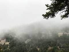 Real-life Silent Hill (ErebusGR) Tags: athens attica attiki tattoi mount mountain parnitha fog forest eerie spooky weather foggy silent hill