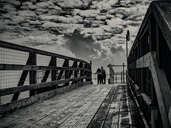 Hull 21.09.2016 (Reynard_1884) Tags: olympusomdem5 fishingport england eastyorkshire greatbritain micro43rds em5 kingstonuponhull mirrorless monotone riverhumber microfourthirds lovers blackandwhite people monochrome artinbw mono bw blackwhite mu43 hull silverefexpro2 olympus uk olympusomd