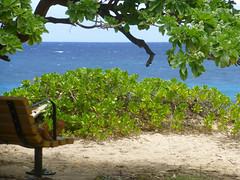 Great place for a snooze (enjbe) Tags: hawaii makapuu ocean beach