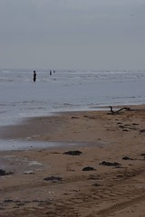The other place (LEALSWEE) Tags: statues beach otherplace anthonygormley crosby liverpool