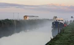 Watery Dawn (powern56) Tags: thewherrylines norfolk eastanglia stolaves norwich lowestoft riverwaveney abelliogreateranglia dmu dieselmultipleunit class156 train railway 156417