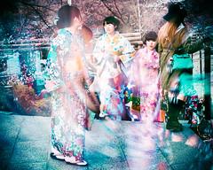 Vague  l'me (couleur) (www.danbouteiller.com) Tags: kyoto japan japon japonia japanese japonais japonaise japonaises women femmes kimono asian asia asiatique traditionnal tradition blur blurred canon canon5d eos 5dmk2 5d 50mm 50mm14 5d2 5dm2