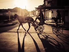 Gibara (gies777) Tags: kuba cuba gibara gegenlicht kutsche pferd olympus omd em5 mft karibik caribbean reise travel vacation schatten shadow coche
