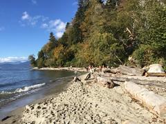 THANKSGIVING DINNER @ Wreck Beach (Pierre  VanCouver) Tags: naturist naturists wreckbeach vancouver thanksgiving nude