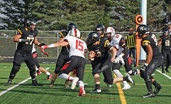 62 (dordtfootball2014) Tags: dordt northwestern
