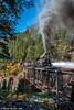 High Bridge Blow-Down (kdmadore) Tags: drgw denverriograndewestern durangosilverton dsng durango silverton steamlocomotive steamengine railroad train narrowgauge
